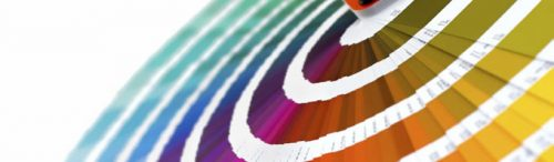 Come convertire i colori da CMYK a PANTONE in Illustrator