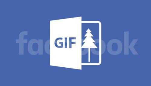 GIF animate su Facebook, come caricarle correttamente nei post