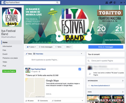 Music Festival Band - Gestione Marketing e Social