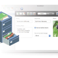 Creare database gratuitamente per Windows, Mac e Linux